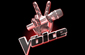 The Voice (Season 2)